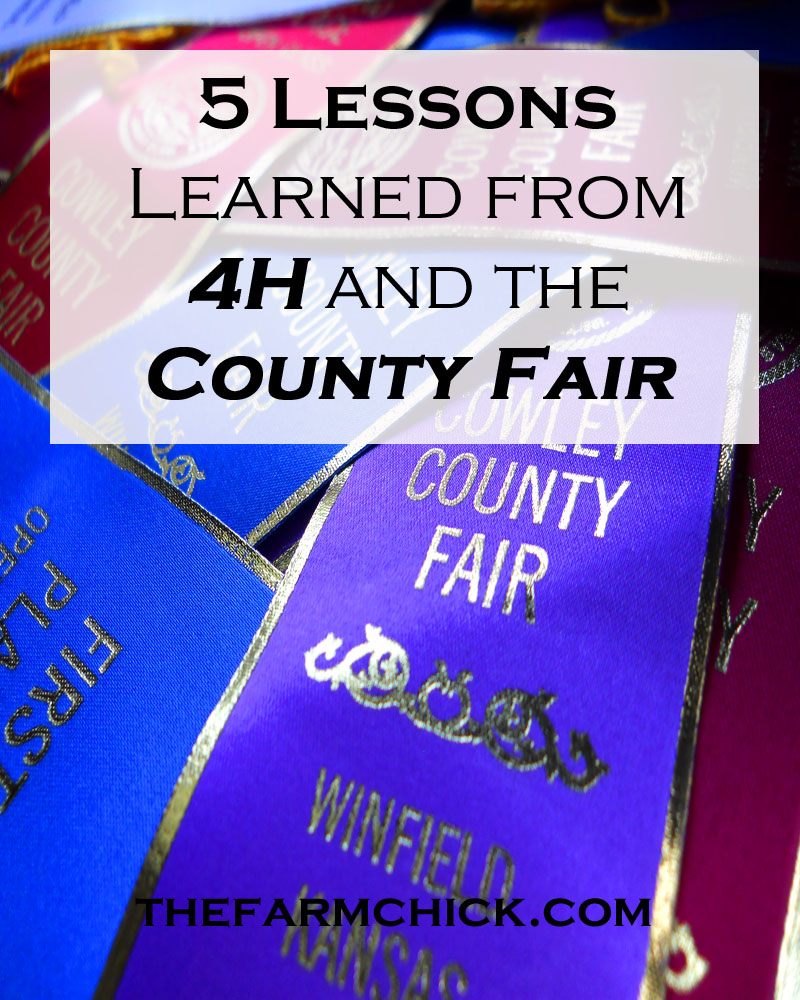 5 Lessons learned from 4H and the County Fair
