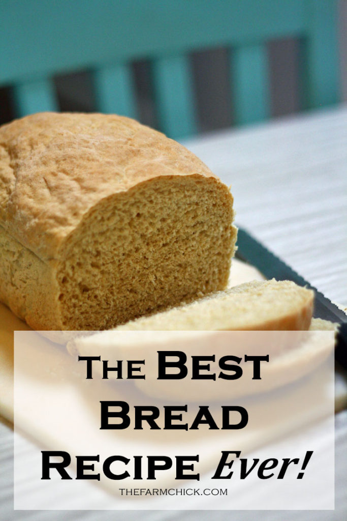 the best bread recipe ever