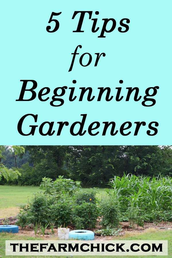 tips for beginning gardeners, vegetable gardening, homesteading