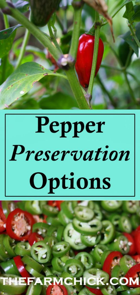 Need help deciding what to do with your abundance of peppers? Learn about three options to preserve your garden harvest! #garden #peppers