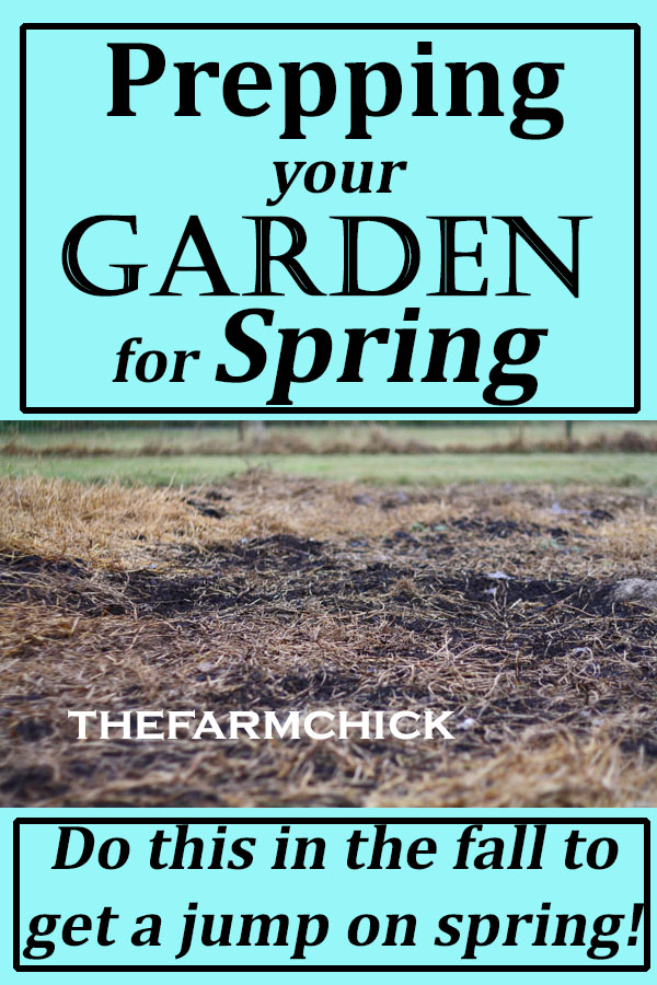 Want an awesome garden? Start prepping in the fall for spring planting! Learn about my 6 top tips for getting your garden ready for spring.
