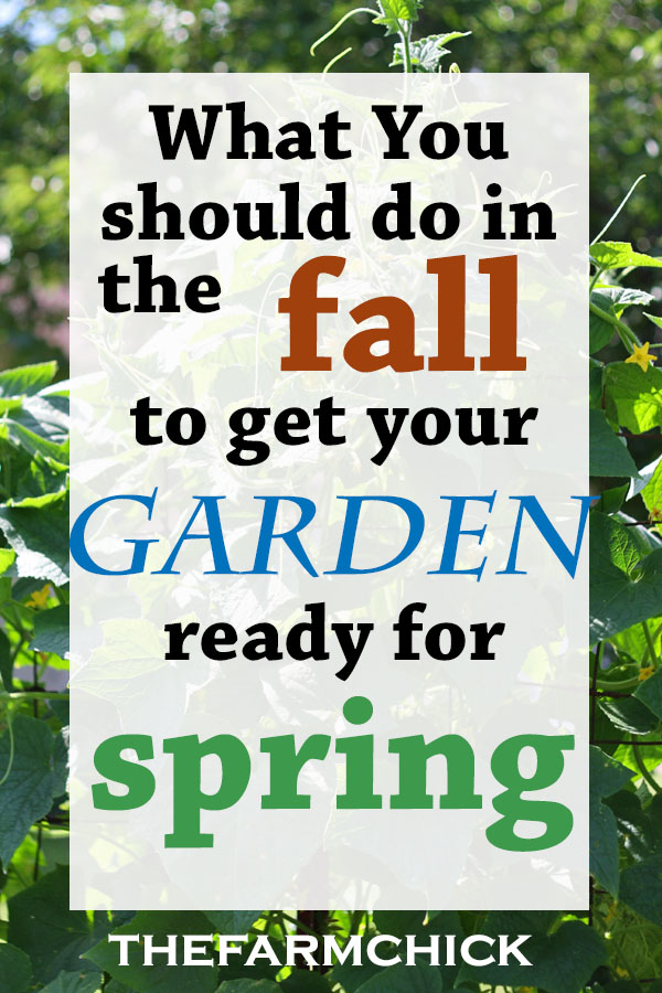 Learn what you can do now (in the fall) to get your garden ready for spring planting!